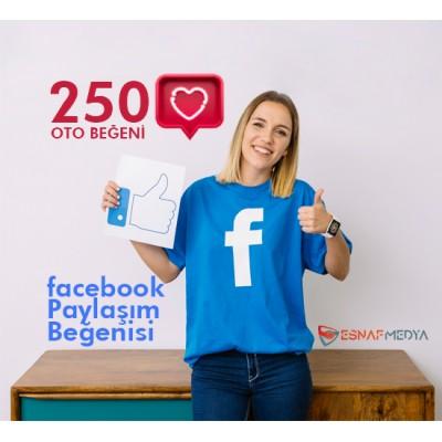 Facebook 250 Oto Beğeni