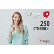İnstagram 250 TÜRK Oto Beğeni Paketi ( 10 Paylaşım için )