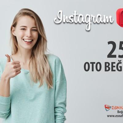 İnstagram 250 TÜRK Oto Beğeni Paketi ( 30 Paylaşım için )