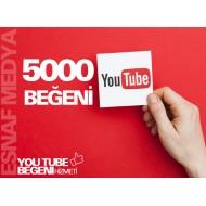 Youtube 5000 Beğeni